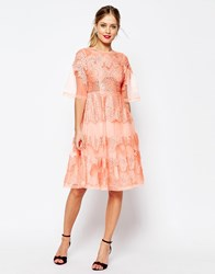 Asos Salon Lace And Organza Midi Dress Coral