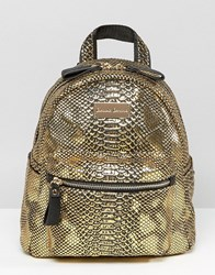 Claudia Canova Mini Backpack Gold Snake
