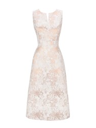 Wallis Rose Gold Jacquard Prom Dress