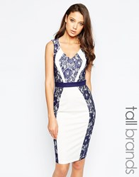 Paper Dolls Tall Colour Block Pencil Dress With Lace Insert Navy