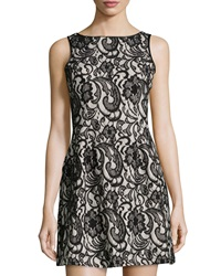 Romeo And Juliet Couture Floral Lace Flared Dress Black Champagne
