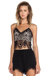 Lovers Friends Remember Me Bralette Black