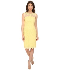 Maggy London Feather Scallop Lace Fitted Sheath Dress Tender Yellow Women's Dress