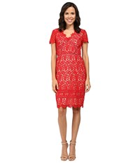 Nue By Shani Lace Dress With Trim Detail Red Nude Women's Dress