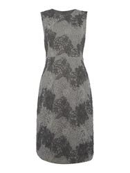 Episode Textured Lace Shift Dress Grey