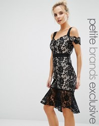 Paper Dolls Petite All Over Lace Dress With Cold Shoulder And Fishtail Detail Black Nude