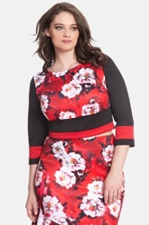 Eloquii Colorblock Crop Top Plus Size Red