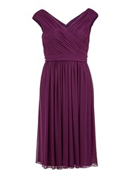 Gina Bacconi V Neck Mesh Dress With Pleated Bodice Purple