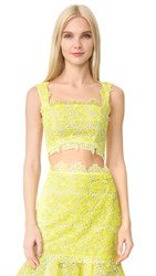 Monique Lhuillier Lace Crop Top Lemon