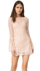 Rachel Zoe Bell Sleeve Dress Blush