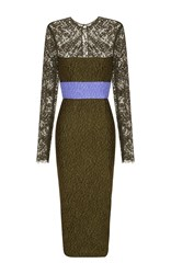 Alex Perry Eliza Cloque And Lace Long Sleeve Contrast Pencil Dress Khaki