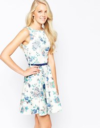 Closet Belted Skater Dress In Bird And Flower Print Floral