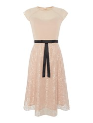 Elise Ryan Cap Sleeve Lace Skater Dress With Short Bow Nude
