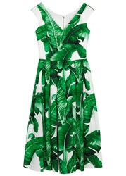 Dolce And Gabbana Palm Tree Print Flared Cotton Dress Green