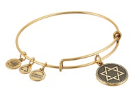 Alex And Ani Star Of David Charm Bangle Ii Rafaelian Gold Finish Bracelet
