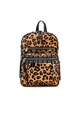 Ash Billy Small Backpack Black