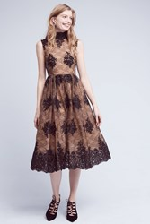 Anthropologie Ardor Lace Dress Black