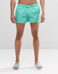 Swells Short Shorts In Aqua Blue