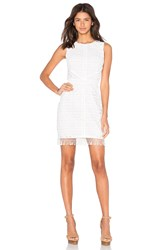 Greylin Mina Fringe Lace Dress White