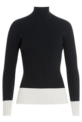 Jil Sander Navy Ribbed Turtleneck With Wool Blue