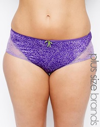 Elomi Jocelyn Brief Iris