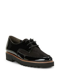 Paul Green Jonah Lace Up Oxfords Black