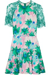 Matthew Williamson Lace Trimmed Printed Jersey Dress Green