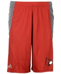 Adidas Men's Louisville Cardinals Primary Screen Clima Shorts Red Gray