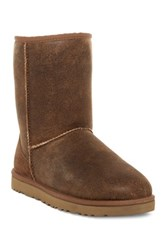 Ugg Classic Short Genuine Sheepskin Bomber Boot Brown