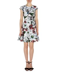 Erdem Darlina Cap Sleeve Floral Print Dress White Red White Red