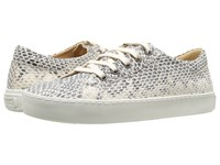 Penelope Chilvers Ribellino Snake Sneaker White Bovine Leather Women's Shoes