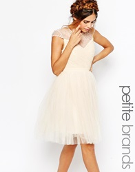 Little Mistress Petite Tulle Prom Dress With Embellished Sheer Detail Cream