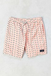 Barney Cools Sunday Umbrella Boardshort Peach