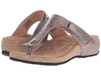 Taos Lucy Taupe Snake Women's Shoes