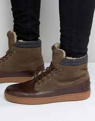 Aldo Divi Leather High Top In Brown Leather Brown