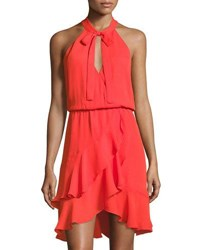 Parker Diane Fit And Flare Ruffle Dress Red