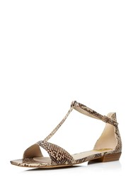 Evans Extra Wide Fit Snake Square Toe Sandal Multi Coloured