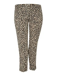 Persona Plus Size Romeo Animal Print Straight Leg Trouser Light Grey