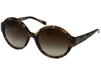 Michael Kors Seaside Getaway Brown Smoke Gradient Fashion Sunglasses
