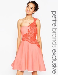 John Zack Petite Prom With Floral One Shoulder Applique Pink