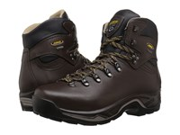 Asolo Tps 520 Gv Evo Chestnut Men's Boots Brown