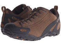 Oboz Teewinot Chestnut Men's Shoes Brown
