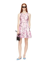 Kate Spade Cotton Candy Caley Dress