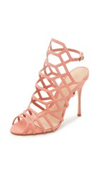 Schutz Juliana Caged Sandals Sweet Peach