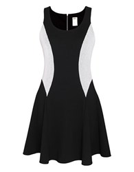 Ali Ro Mesh Inset Fit And Flare Dress Black White