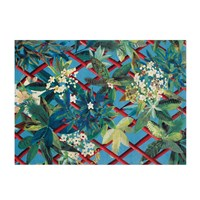 Christian Lacroix Canopy Turquoise Rug 170X230cm