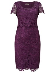 Jacques Vert Opulent Lace Dress Mid Purple