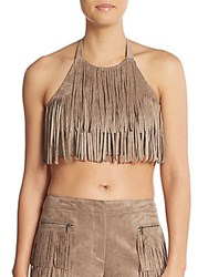 Bcbgmaxazria Sueded Fringe Halter Crop Top Mocha