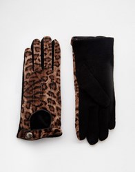 Pia Rossini Leopard Print Gloves Leopard Brown