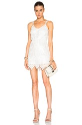 Sass And Bide Little Sparrow Dress In White Metallics